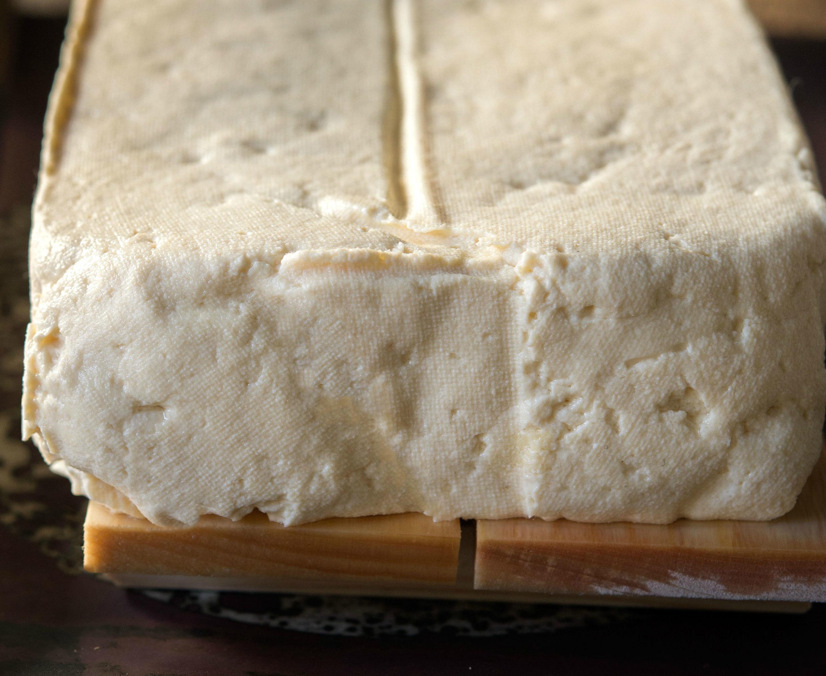 fresh tofu