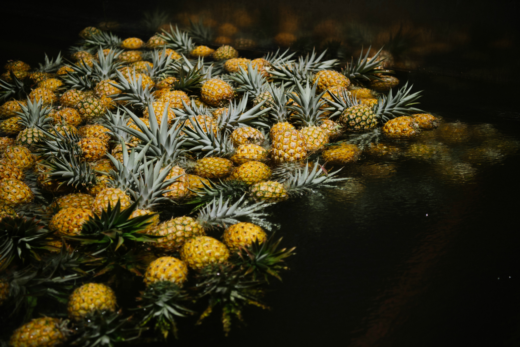 Pineapple_sorting