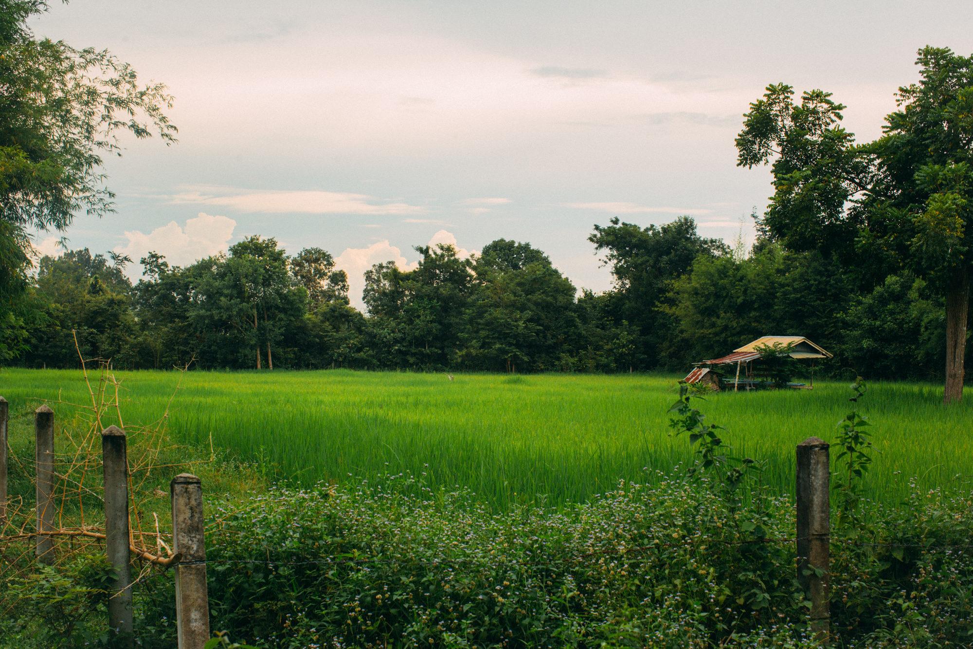 EWP2014_Thailand-1777