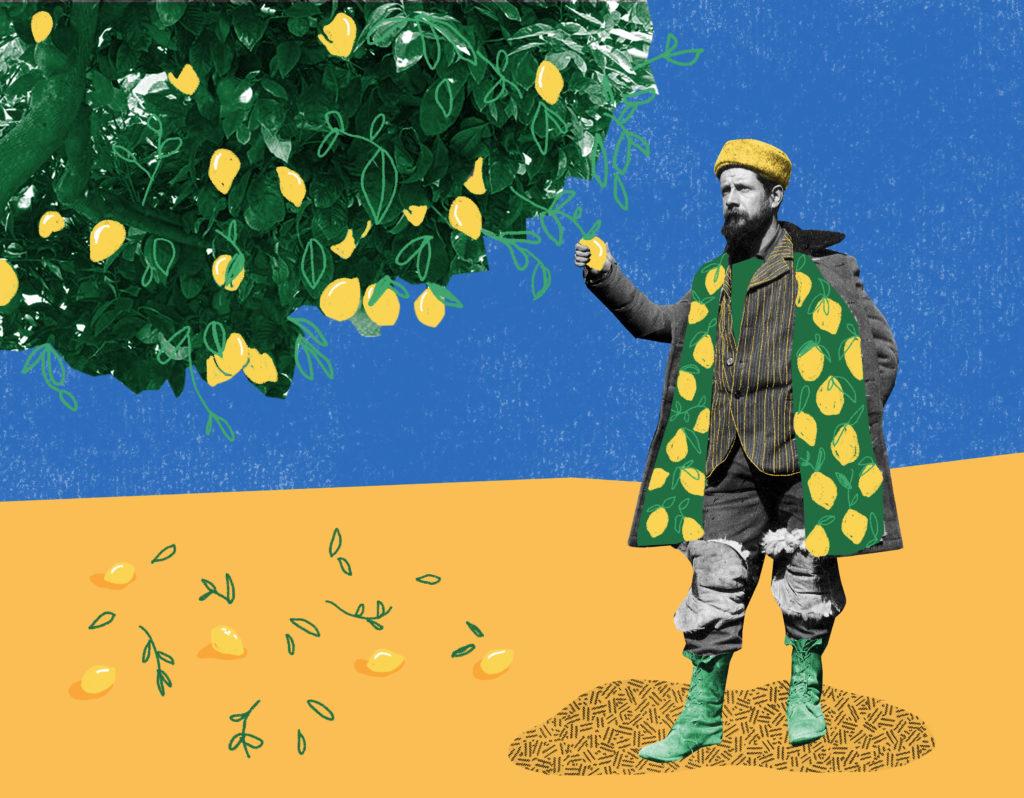 A Man, a Plan, a Lemon, China