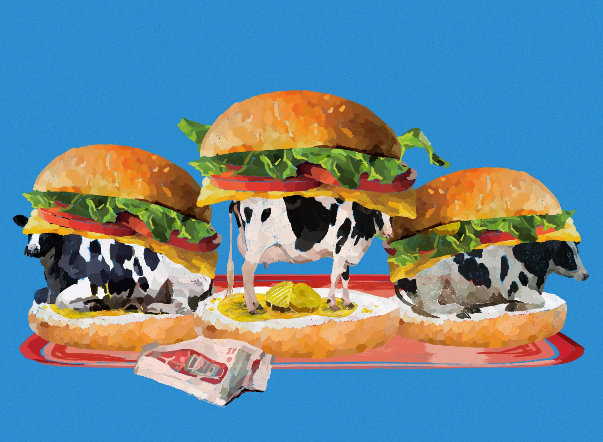 Taste_Dairy_B
