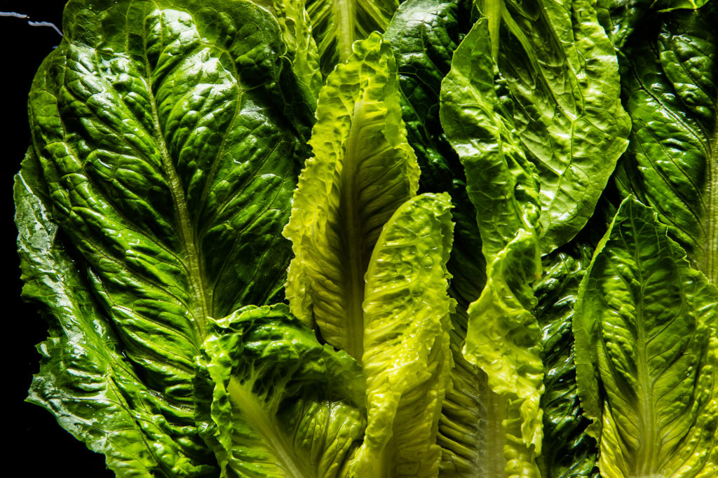 Cooking in the Age of Deadly Romaine
