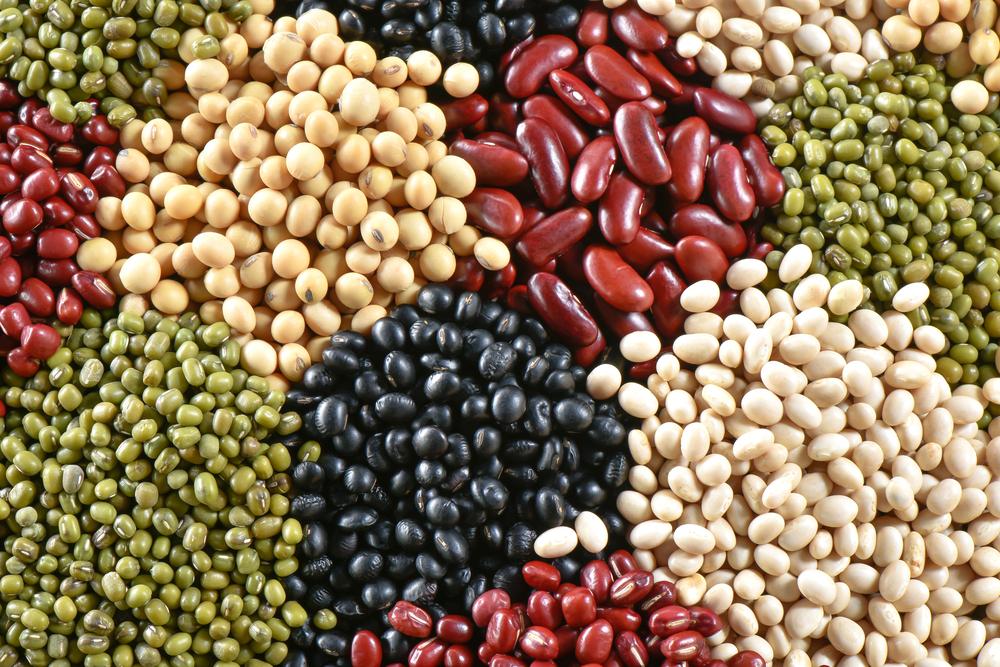 05.03_beans