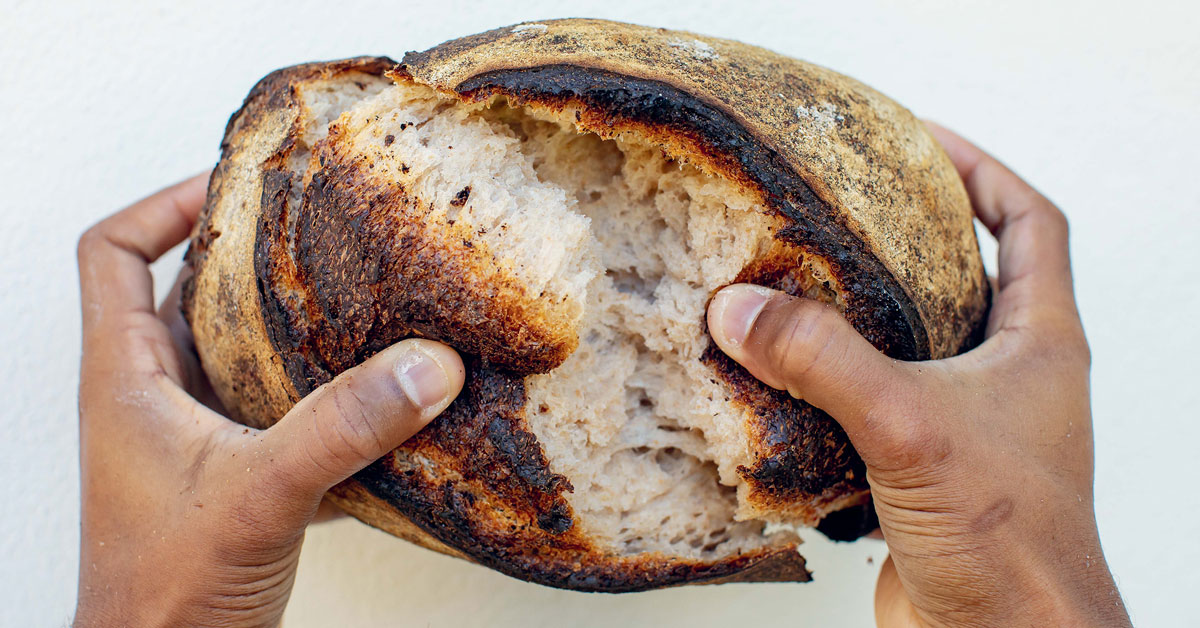 New-World Sourdough Is Hardly New