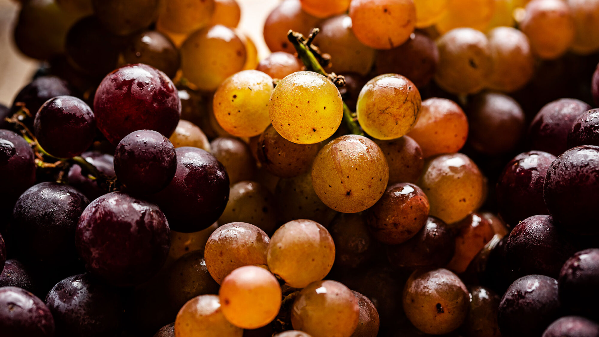 Article-Seasonal-Grape-Recipe