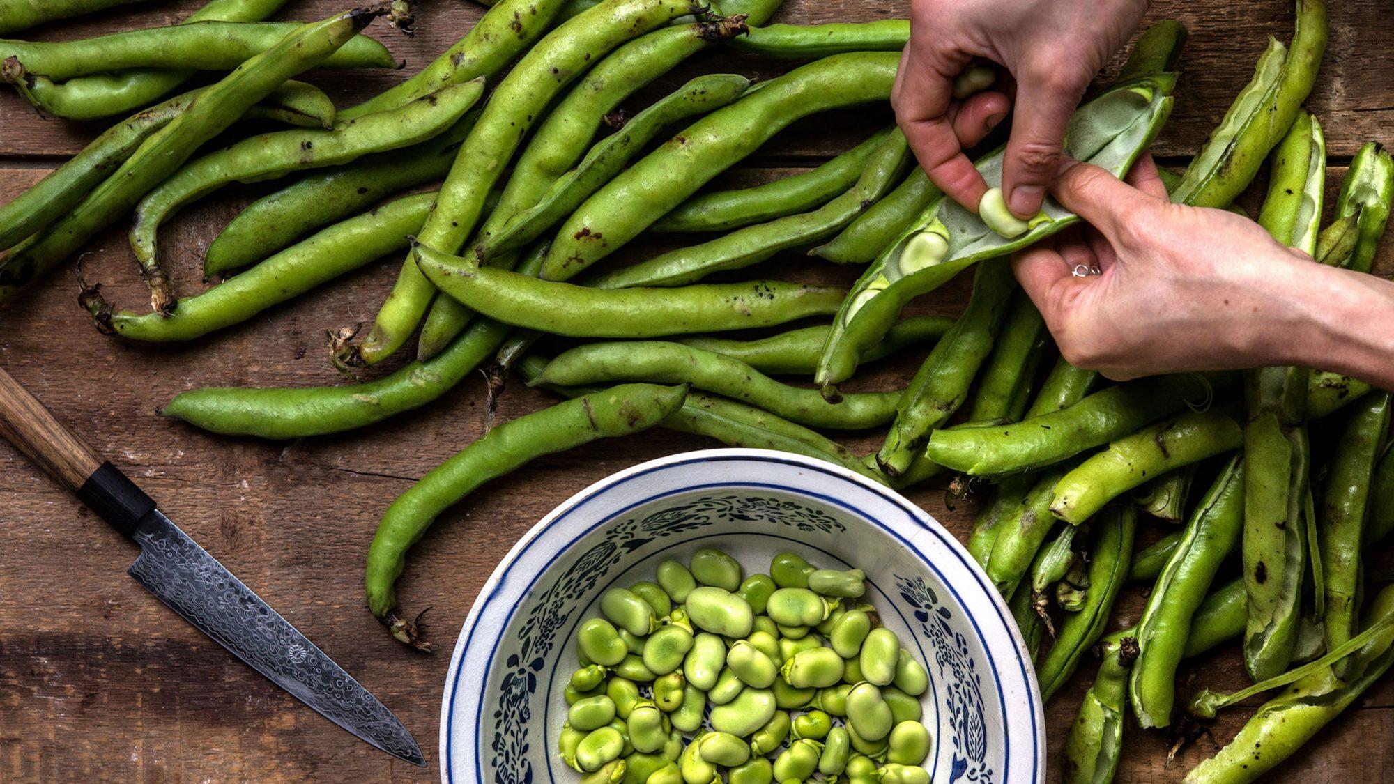 Article-Spring-Vegetable-Fava-Bean-Recipe